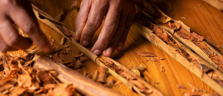 Cinnamon Selection